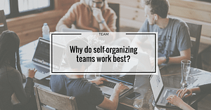 Why do self-organizing teams work best?